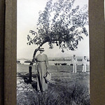 The solitary tree, Mudros