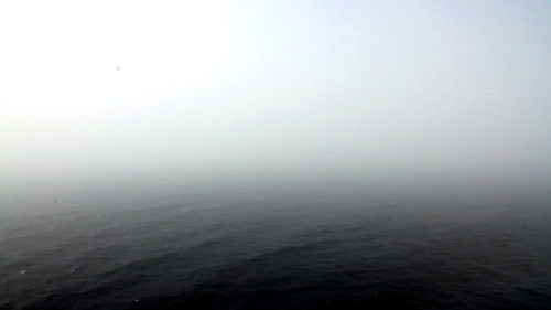 Norwegian Pearl - Moving Through The Fog