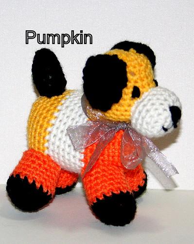 Pumpkin by bssdpersonnel