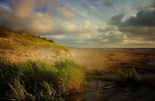 sunset creek sand sundown dunes baltic seashore sanddunes greenscene sailsevenseas sailsevenseasmaster