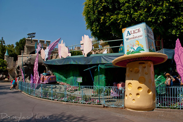 Alice in Wonderland Temporary Safety Rails and Tarps