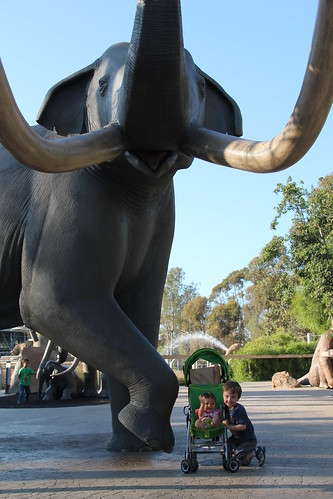 Olsen and Jovie and an elephant