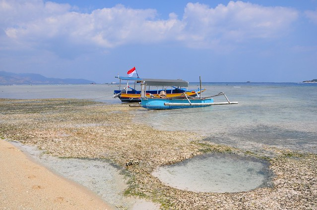 Turtle Point   Gili Meno