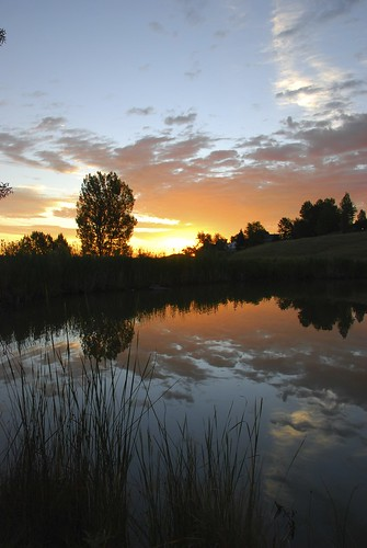 sky reflection silhouette clouds sunrise pond colorado view image suburban path walk suburbia denver hike trail suburb