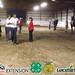 Horse Judging Contest