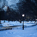 New York Central Park 27inch of Snow by Dan - DB Photography