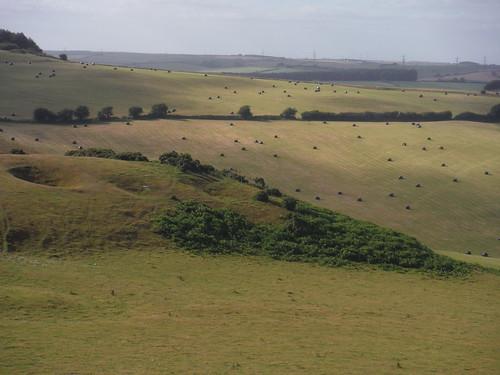 Along Bronkham Hill