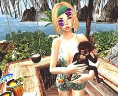 Sous les tropiques (Le Coq D'or)