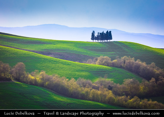 Italy - Tuscany - Val d'Orcia - UNESCO World Heritage Site - Typical view of the rolling hills with cypress trees