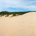 Dunes National Park, OR panorama