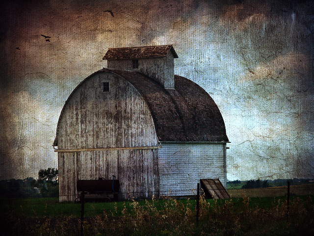 White Barn in Field