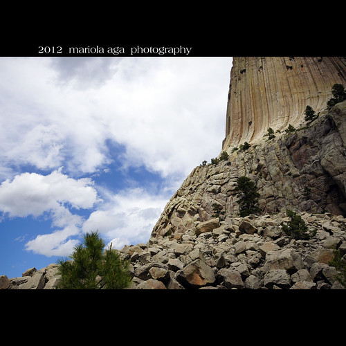 Devils Tower ~ closeup of the geological structure by mariola aga