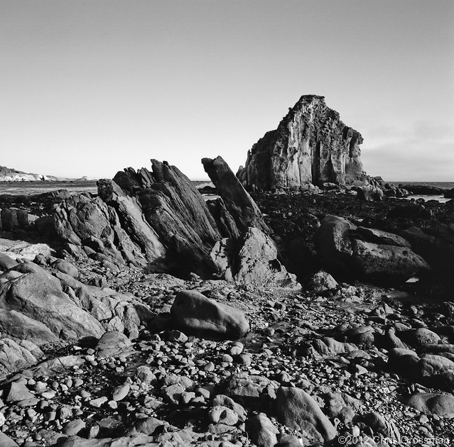 The Rocks Just South of Iversen Cove at Low Tide - Mamiya 6 - 50mm F/4 - TMAX 100