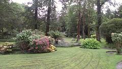 botanical garden, shrub, flower, garden, yard, landscaping, landscape, lawn,