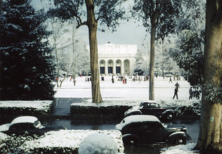 A rare snow on Marston Quad in 1949