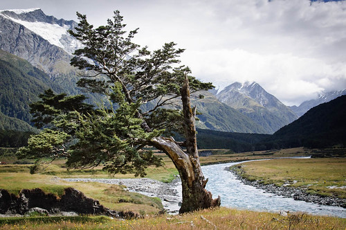 Matukituki Valley, Mount Aspiring National Park, Wanaka, New Zealand
