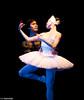 00001155 Artsfest 2012 - Birmingham Ballet Company