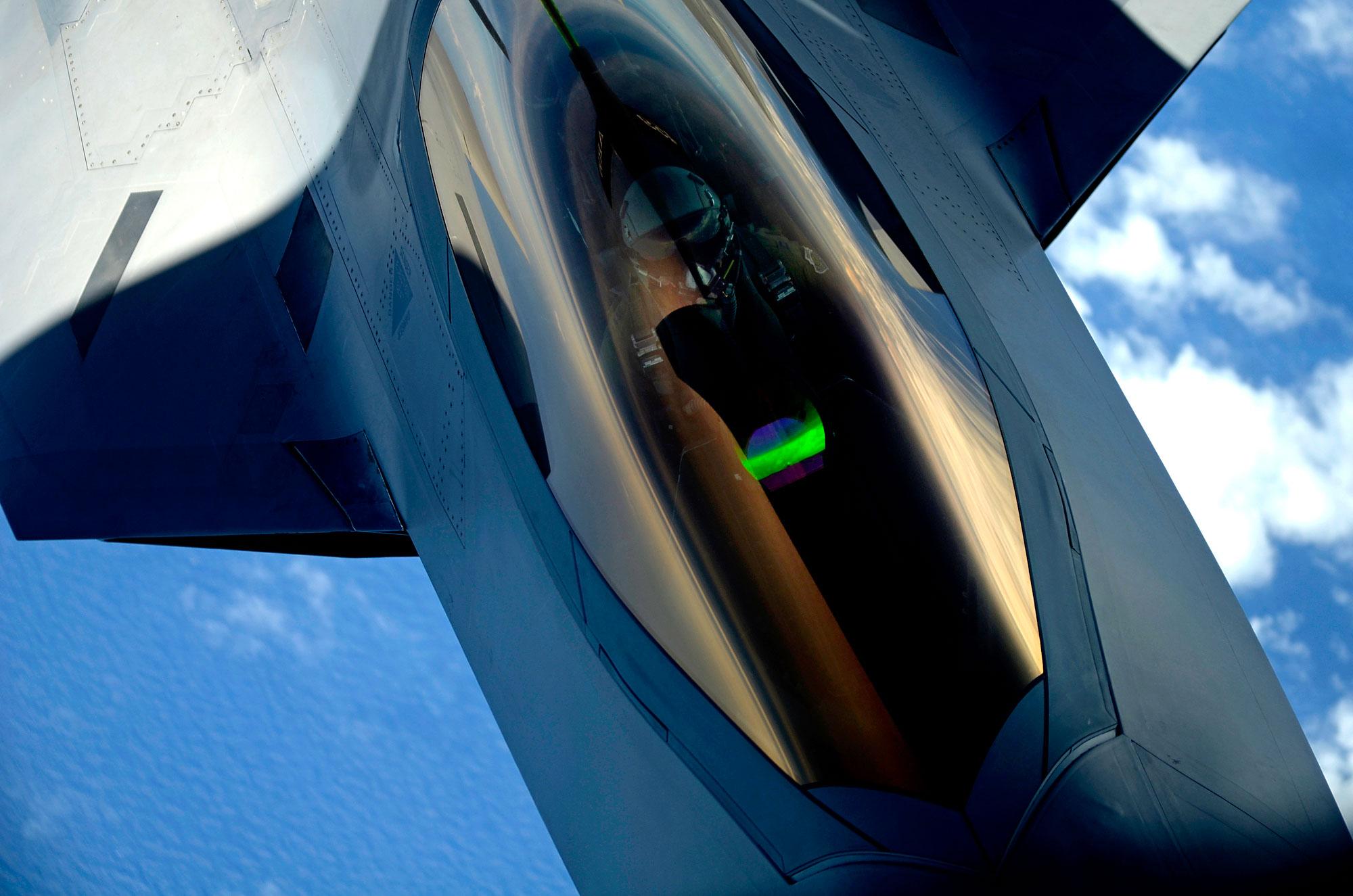 F-22 Raptor 010