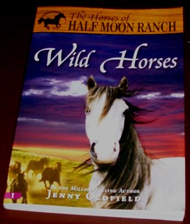 Wild Horses by Jenny Oldfield