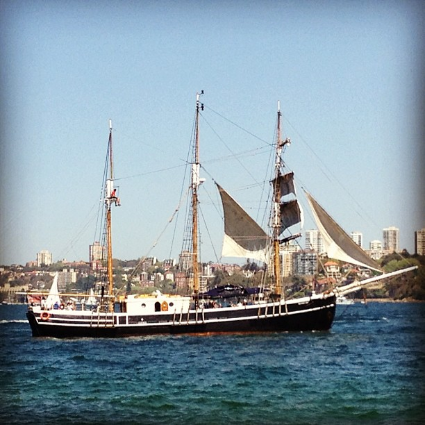 Pirates in Sydney Harbour. Aaaarrrrr.