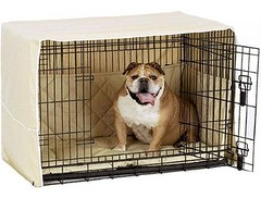 Pet Dreams Side Door Cratewear