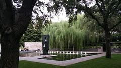 Nasher Sculpture Center, Dallas, Texas (22)