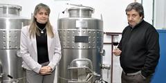 San Rafael: Buscan obtener una levadura que distinga y caracterice los vinos sanrafaelinos