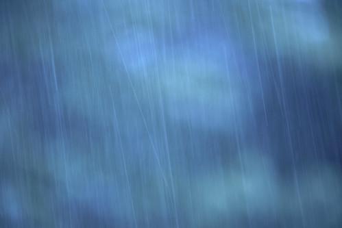 Rain in woods.