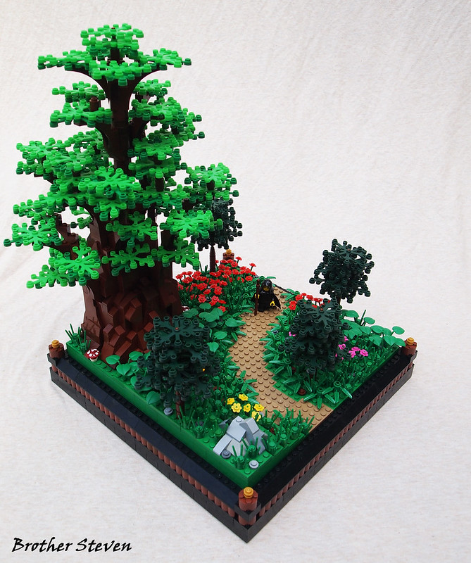 A Walk in the Forest.