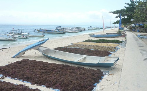 Bali-Lembongan-Jungutbatu-Plage (5)