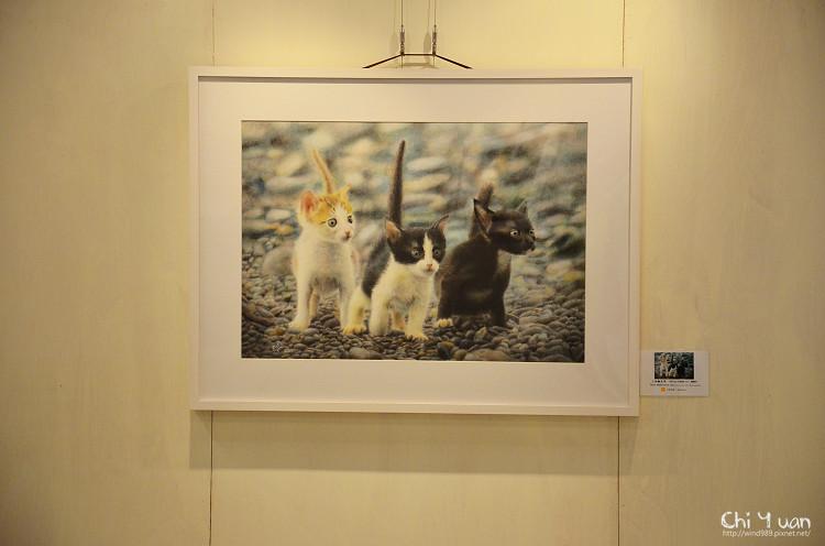 陳曉玲2012色鉛筆個展08.jpg
