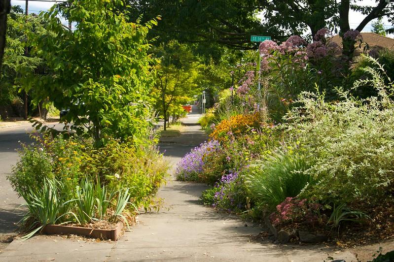 Sunny Midday Garden  2100