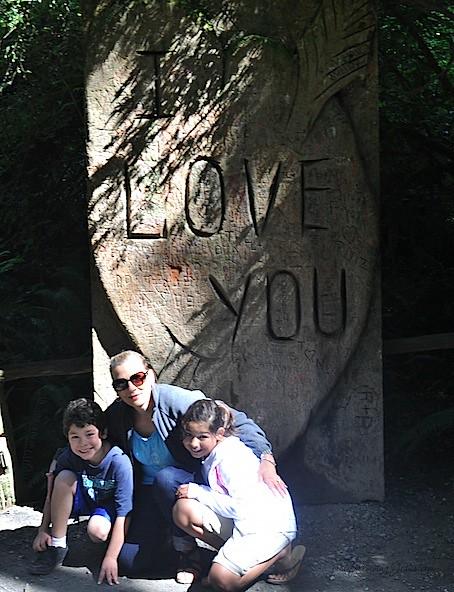 redwoods 9.jpg