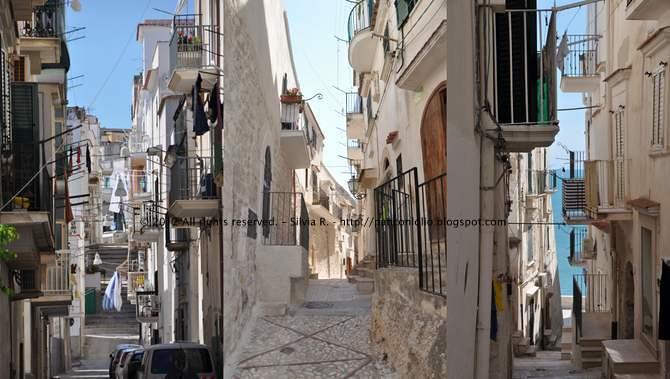 Foto Puglia 20123