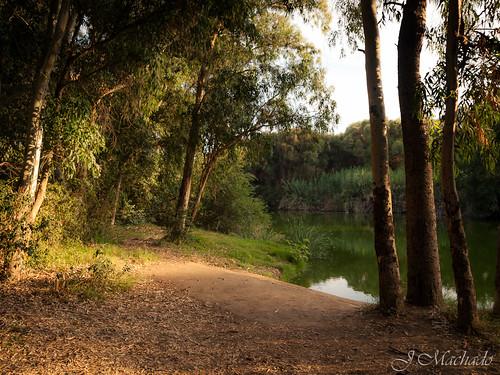 254/361+1 Río las Cañas (Mirador del río) by Juan_Machado