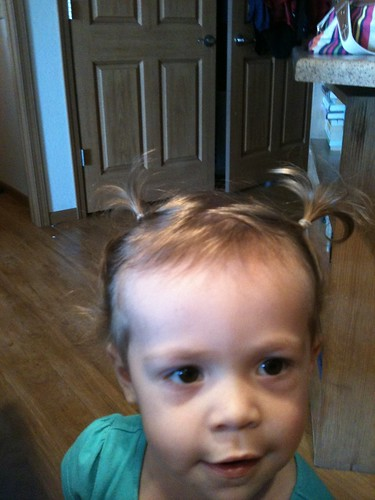 Pigtails resemble horns.