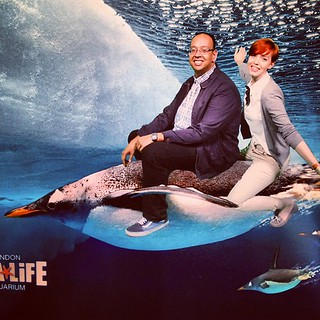 Yep, we rode a penguin ~ THIS ACTUALLY HAPPENED!