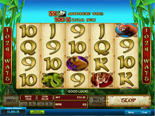 Lucky Panda slot game online review