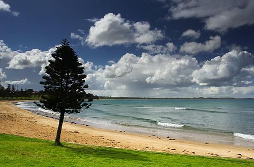 Cosy Corner, Zeally Bay, Torquay, Victoria, Australia  IMG_2873_Torquay