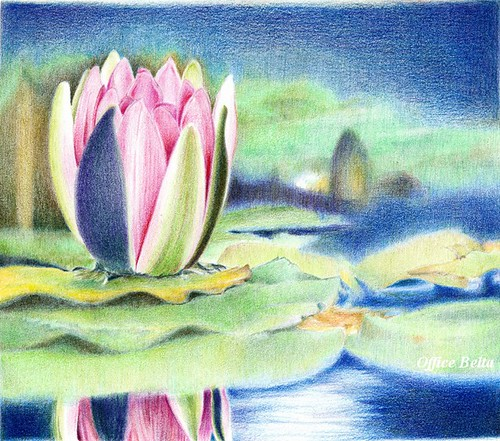 2012_06_28_waterlily_17 by blue_belta