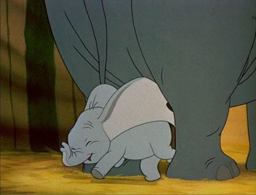 Dumbo scamper