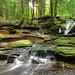 East Branch Falls (Upper Part) (2) by Nicholas_T
