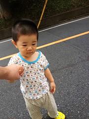 朝散歩とらちゃん (2012/8/11)