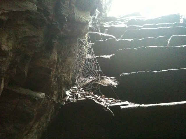 spiderweb - arch rock