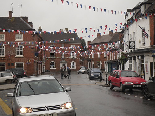 Alcester bunting
