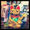 Hallo Mr. Katze!!