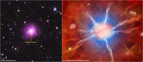The Remarkable Phoenix Cluster (NASA, Chandra, 08/15/12)