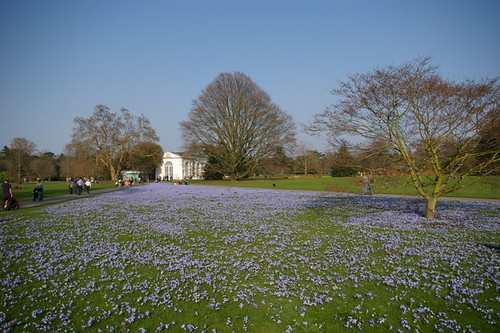 Kew_Gardens-020