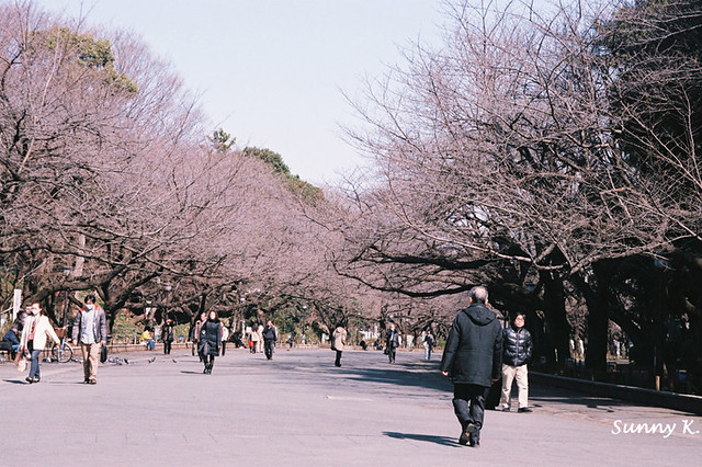 Ueno Park 3