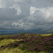 Small photo of Howden Moors
